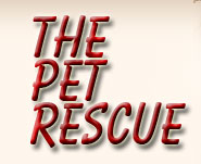The Pet Rescue